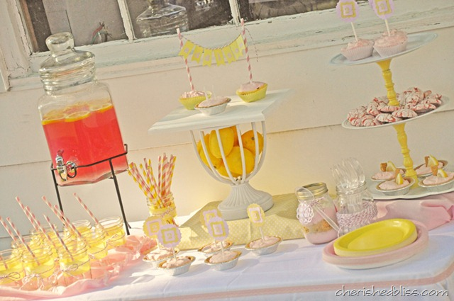Cherished Bliss Pink Lemonade Party