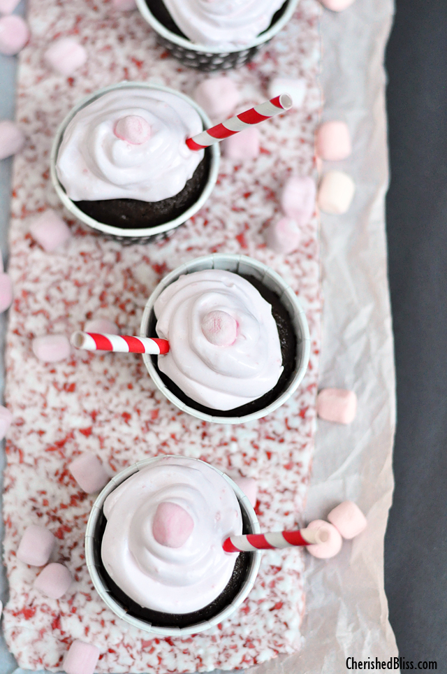 Make this Festive Crushed Peppermint Tray to display all your Holiday Baking!