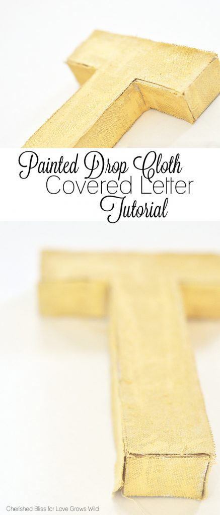 See how to make these textured Painted Drop Cloth Covered Letters. A great addition to your home decor!