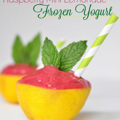 Raspberry Mint Lemonade Frozen Yogurt