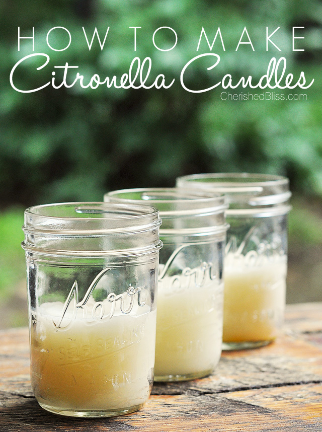Find several Easy DIY Summer Projects, including these Citronella Candles to help keep the mosquitoes away!