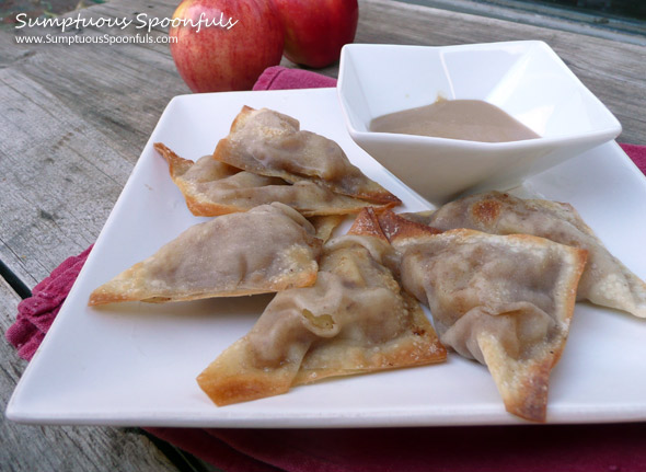 Apple-Pie-Wontons-Baked-Low-Sugar-3