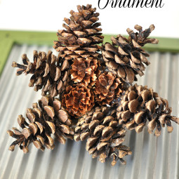 Create this Star Pine Cone Ornament from pine cones found in your very own yard! via cherishedbliss.com