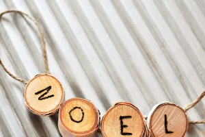Enjoy these cute little banner style Wood Slice Noel Ornaments