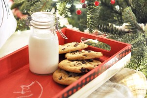 Make this easy Santa Cookie Tray to keep Santa's cookies and milk safe and sound!
