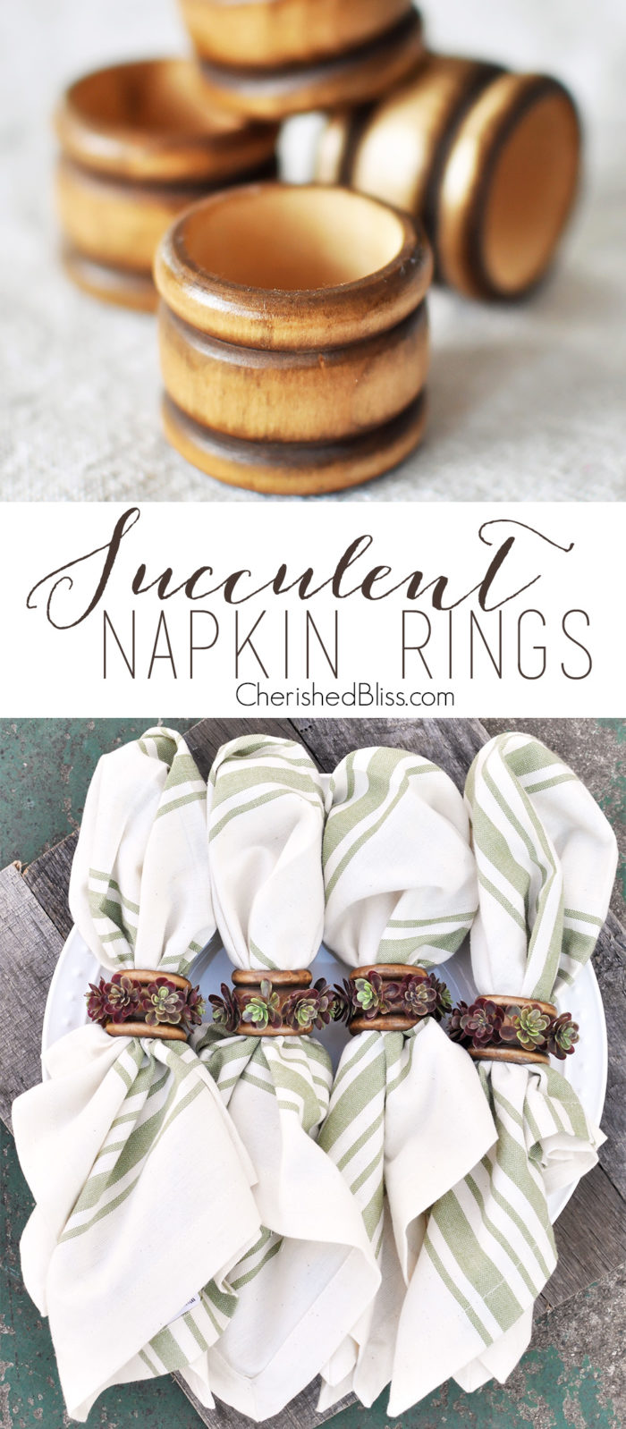 With just a few supplies you can create these beautiful succulent napkin rings. These are perfect for fall but easily transition through each season.