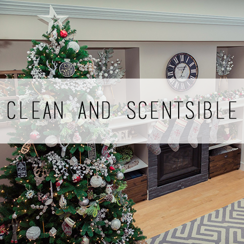 Clean and Scentsible