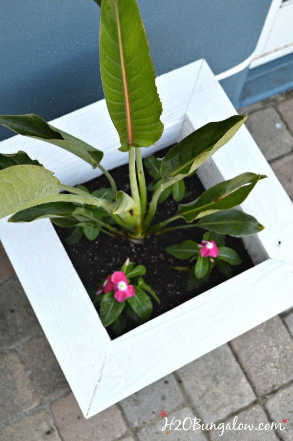 Build-a-spring-planter-box-H2OBungalow