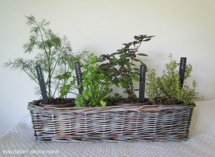 garden-four