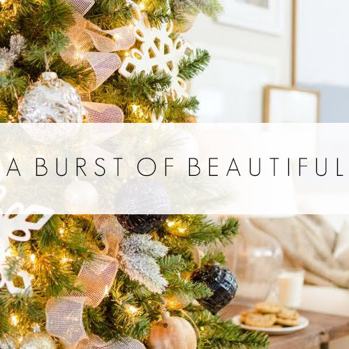 a-burst-of-beautiful
