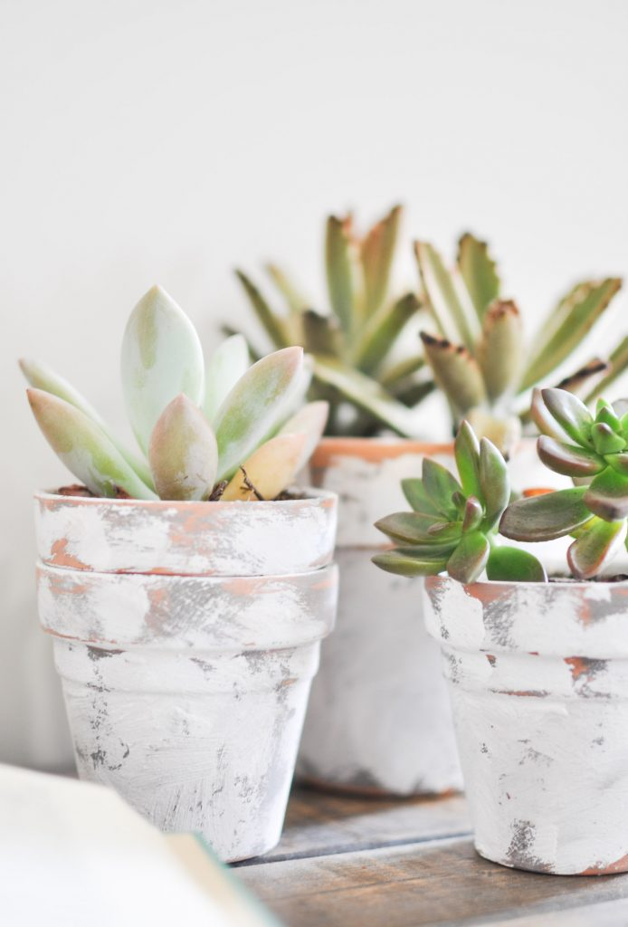 Create these beautiful Coastal Terra Cotta Pots in just a few easy steps!