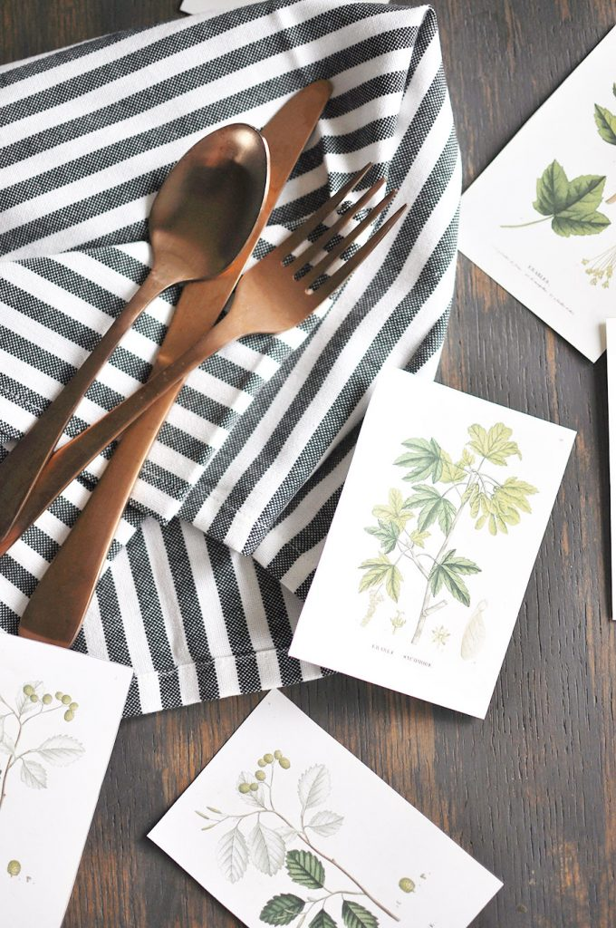 Download a copy of these simple Fall Botanical Printables to use in your fall decor this year!