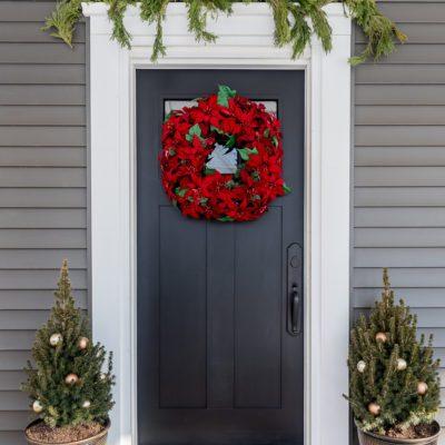 Simple Winter Front Door