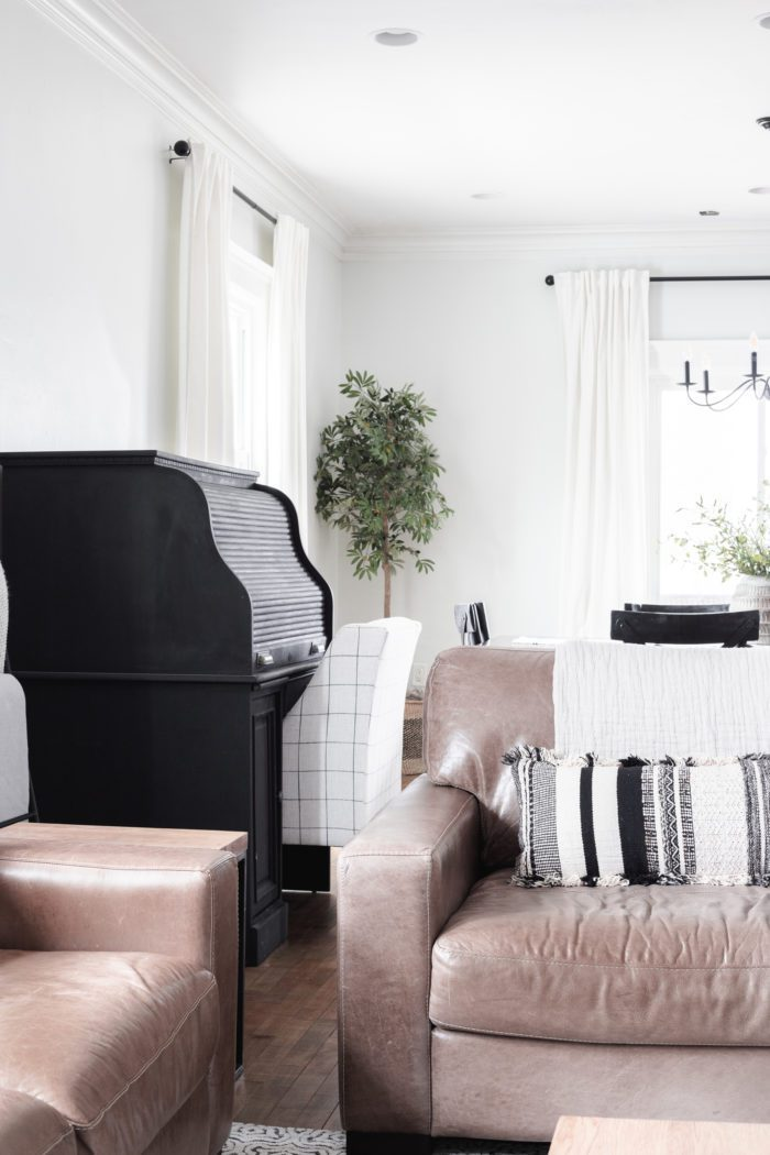 Leather Sofa and Chair. Spring Decor in Living Room.
