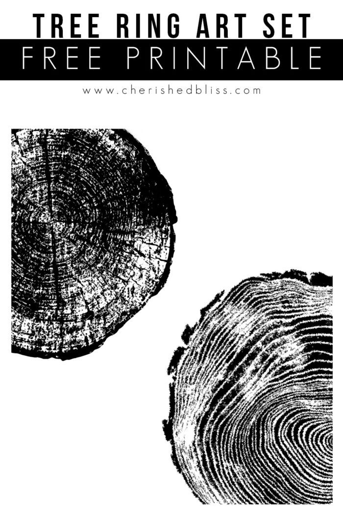 Tree Ring Art Set Free Printable