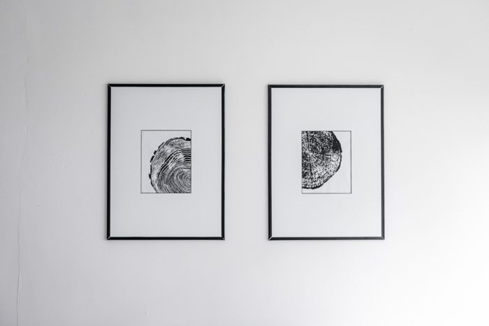 Free Prints - Black and White Art with Tree Rings