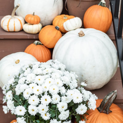 Cozy Outdoor Fall Decor Ideas