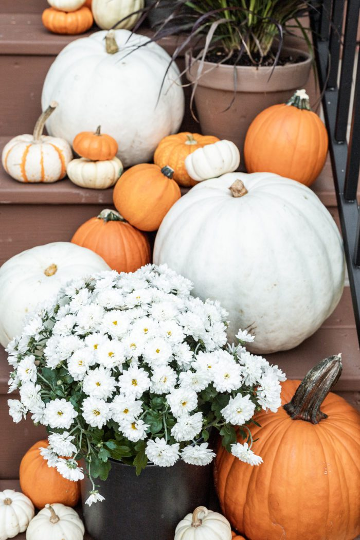 pumpkins and mums on front porch steps