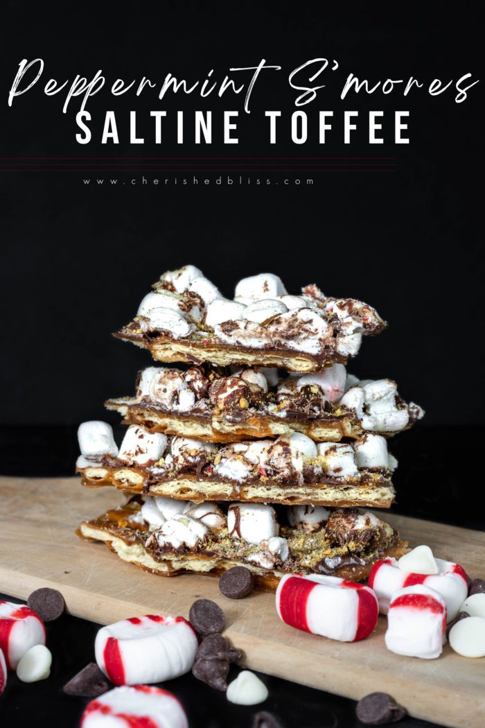 The perfect Christmas Dessert - Peppermint S'mores Saltine Cracker Toffee